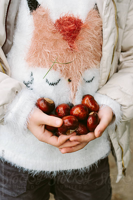 A foxy sweater and hands full of conkers. Autumn. by Helen Rushbrook for Stocksy United