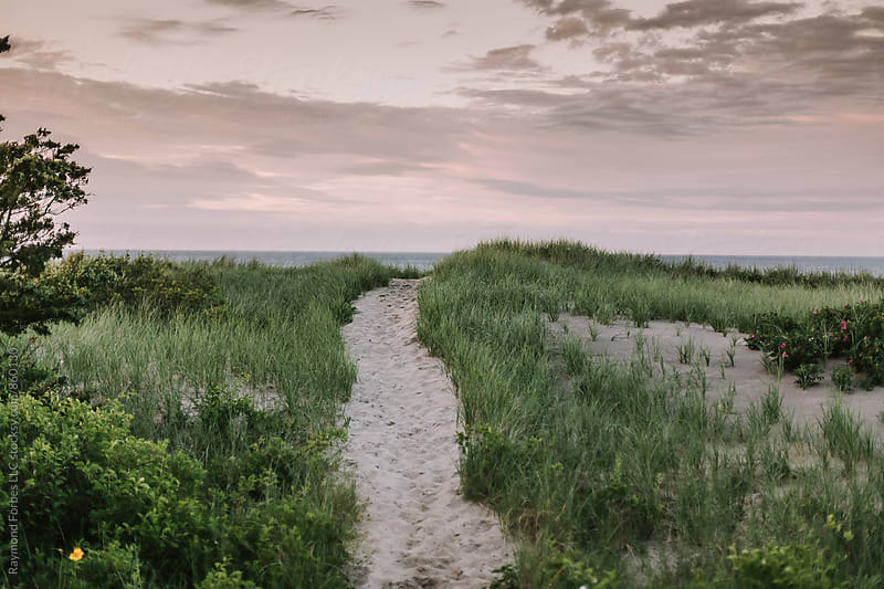 Cape Cod Dunes by Raymond Forbes LLC for Stocksy United