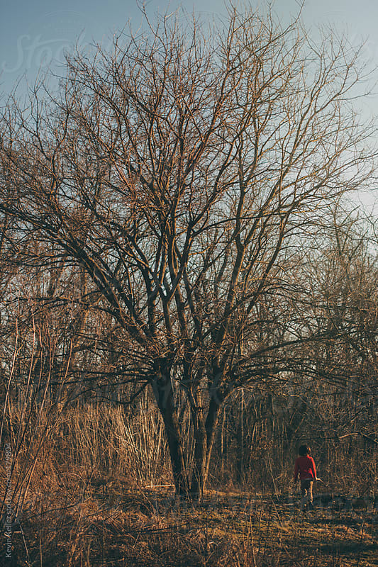 Young Boy Walking Under Tree in March by Kevin Keller for Stocksy United