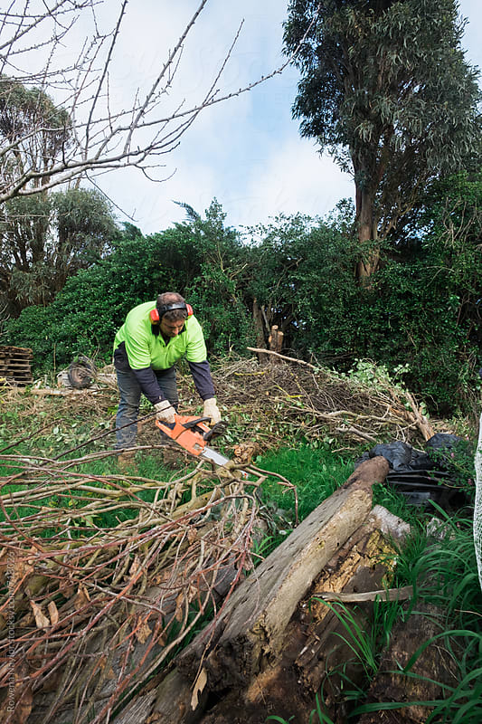 Man using chainsaw to clear trees by Rowena Naylor for Stocksy United