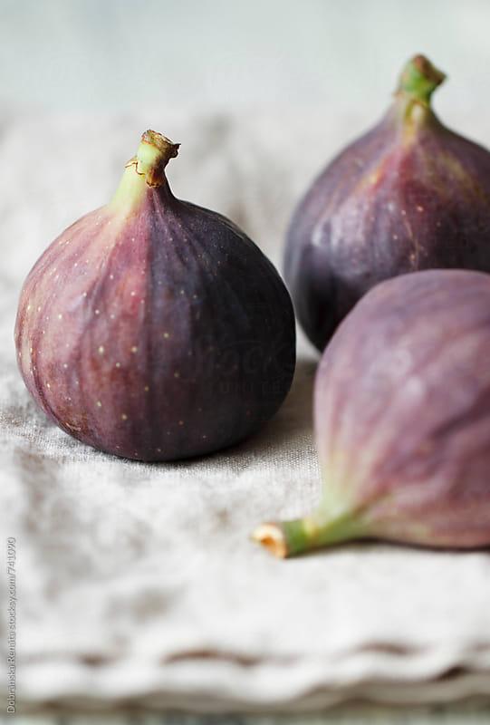 Fresh figs by Dobránska Renáta for Stocksy United
