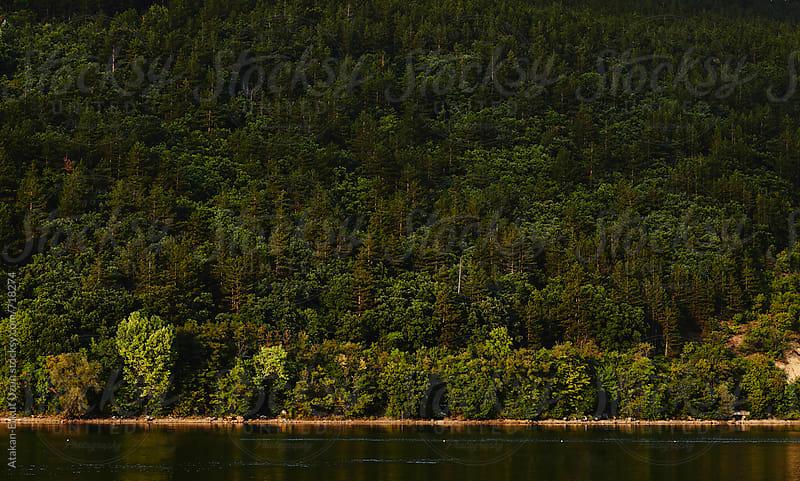 Rowing lake in the nature by Atakan-Erkut Uzun for Stocksy United