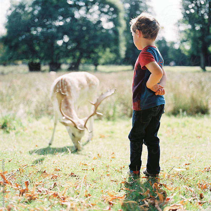 Young child exploring wildlife by Andrew Spencer for Stocksy United