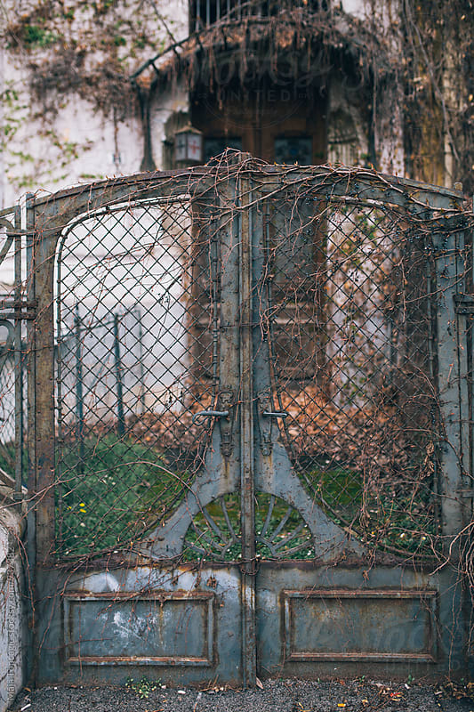 Old vintage door on the street by Maja Topcagic for Stocksy United