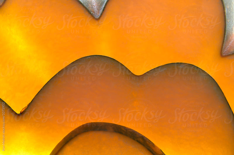 Closeup macro photograph of patterns of acorn squash (Curcurbita pepo) by Ron Mellott for Stocksy United