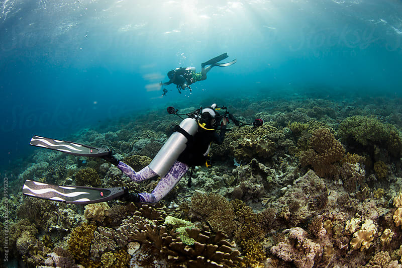 underwater photographer take photo for diver by Song Heming for Stocksy United