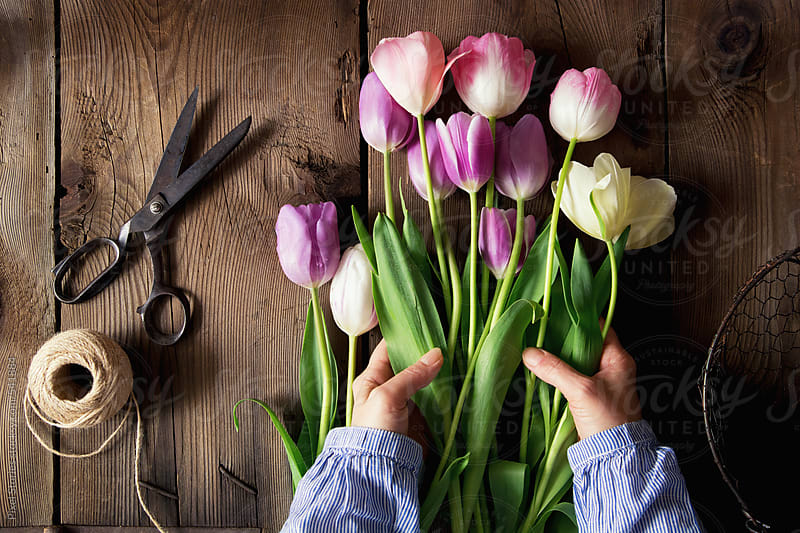 Making tulips bouquet by Pixel Stories for Stocksy United