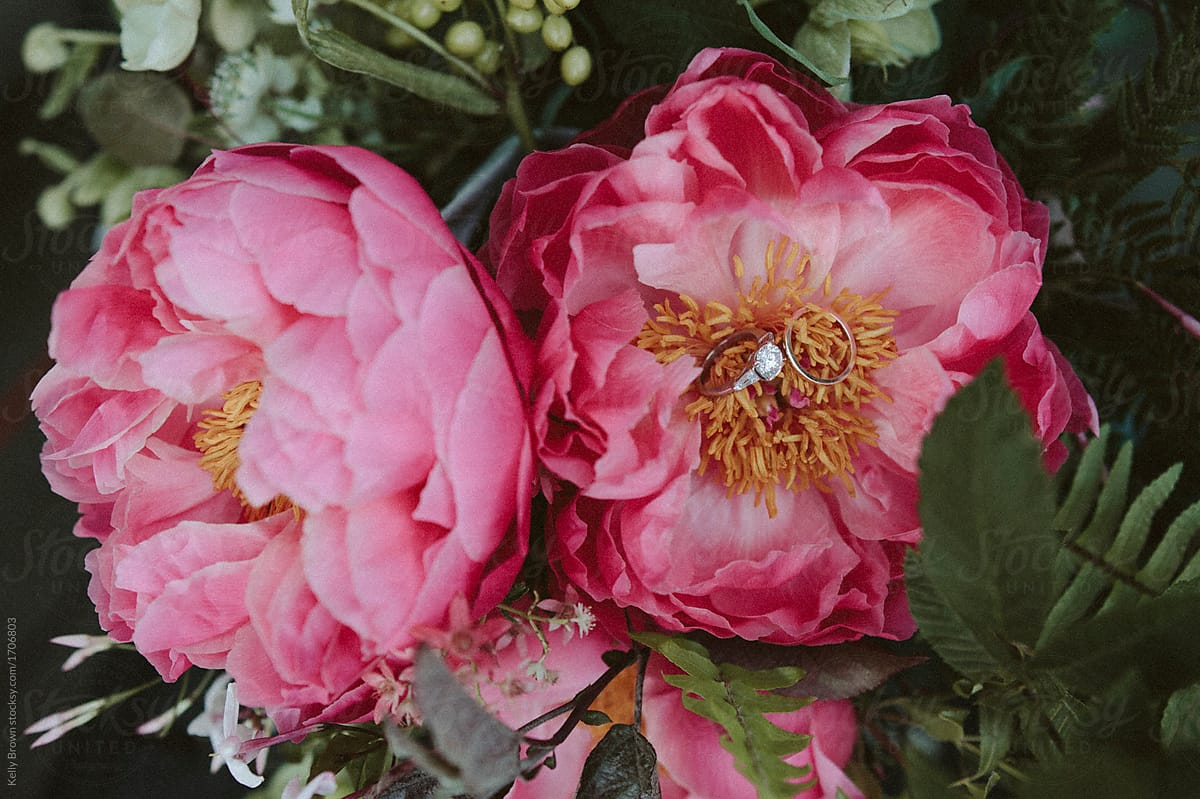 Gorgeous Pink Flowers With A Wedding Ring In It Stocksy United