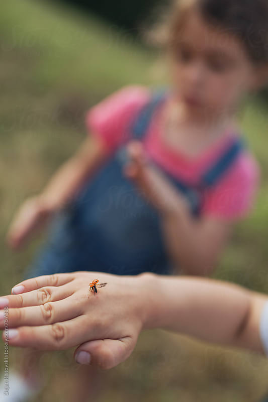 Child and a ladybug. by Dejan Ristovski for Stocksy United