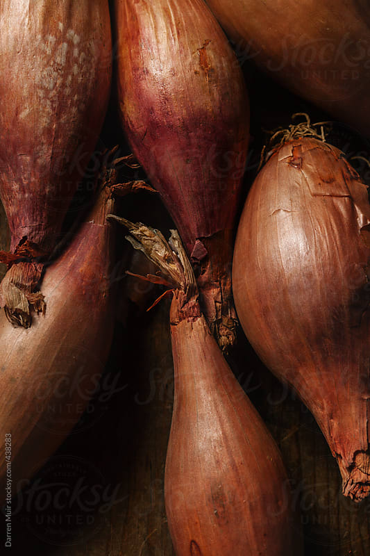 Closeup of banana shallots. by Darren Muir for Stocksy United