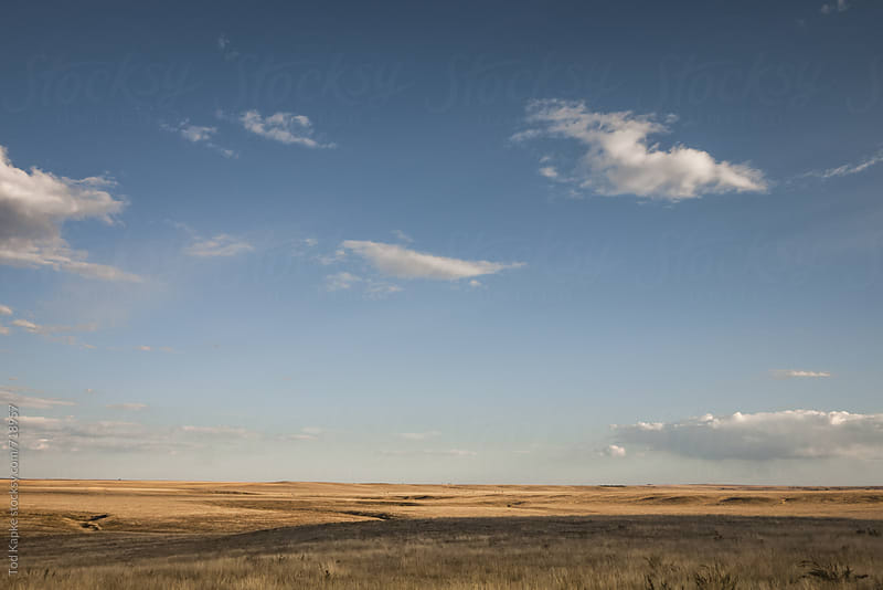 pawnee national grasslands Colorado by Tod Kapke for Stocksy United