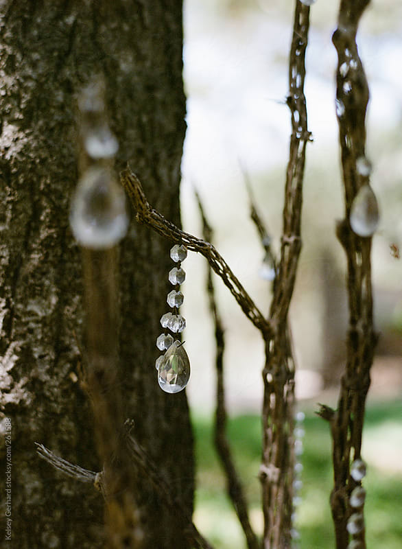 Crystals hanging in trees. by Kelsey Gerhard for Stocksy United
