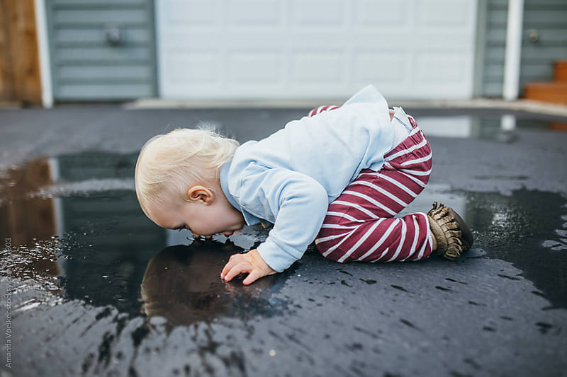 A toddler Boy Drinks Face down from a puddle on the asphalt by Amanda Voelker for Stocksy United