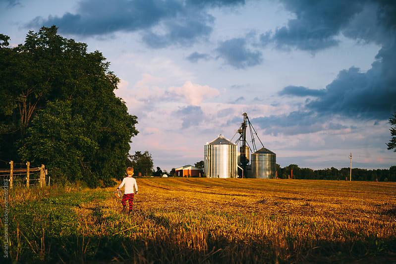 a little boy walking in a farm field by Sarah Lalone for Stocksy United