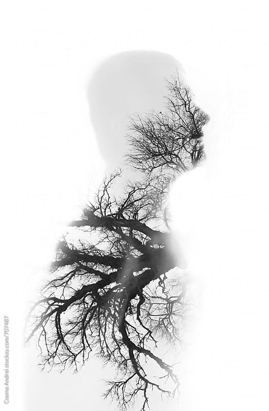 Portrait of man and nature double exposure with tree by Cosma Andrei for Stocksy United