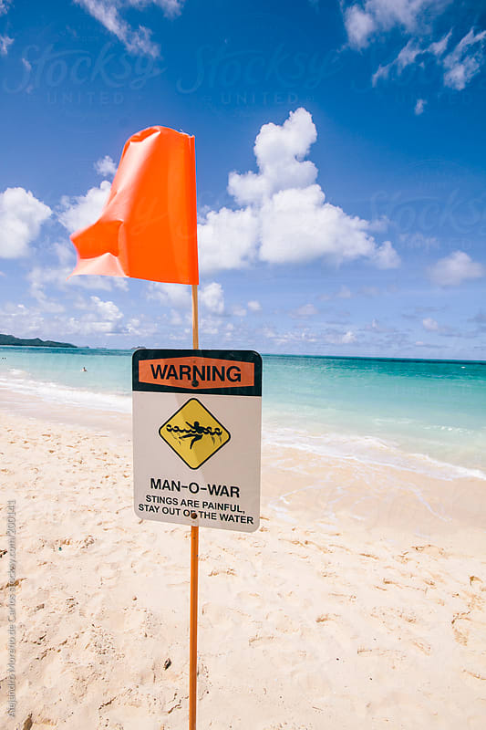 Warning sign on the beach because of jellyfish - man o´ war infestation by Alejandro Moreno de Carlos for Stocksy United