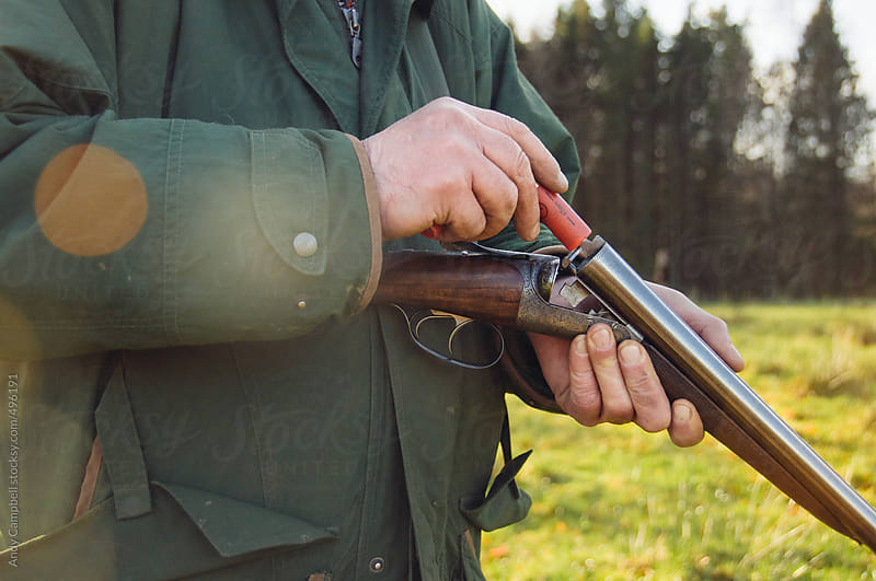 A pheasant hunter loads his shotgun by Andy Campbell for Stocksy United