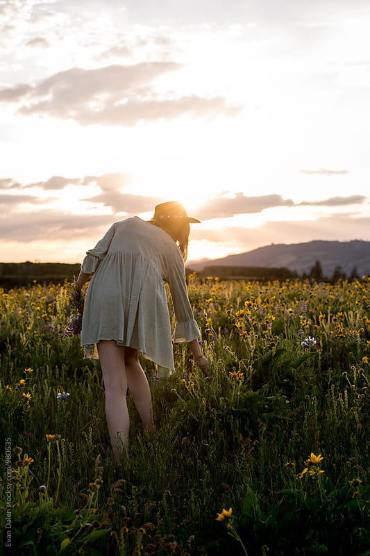 Young Woman Picking Wild Flowers in Field by Evan Dalen for Stocksy United