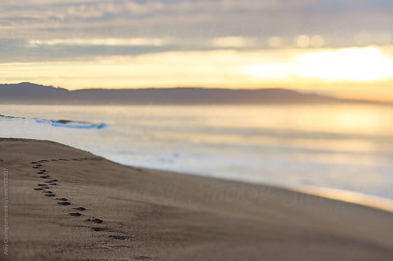 Footsteps on the beach at sunset by Amy Covington for Stocksy United