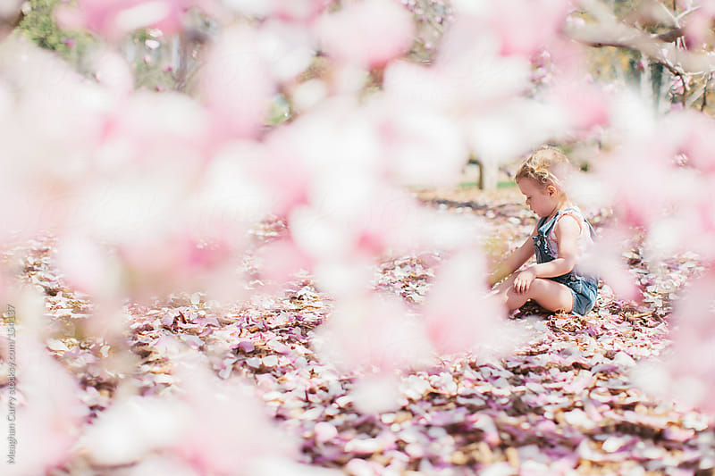little girl and spring petals by Meaghan Curry for Stocksy United