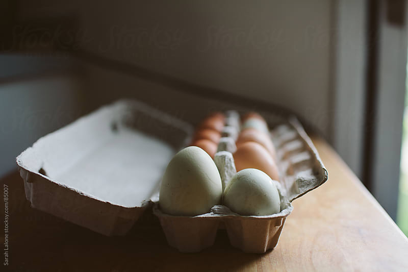 a dozen naturally colored eggs in a carton from free run chickens by Sarah Lalone for Stocksy United
