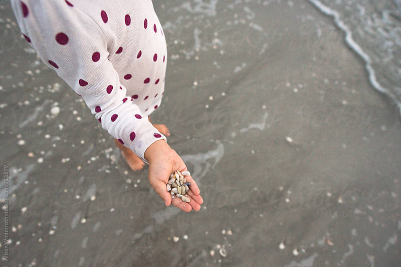 A Child Holds Coquina Shells In Her Hands by Alison Winterroth for Stocksy United