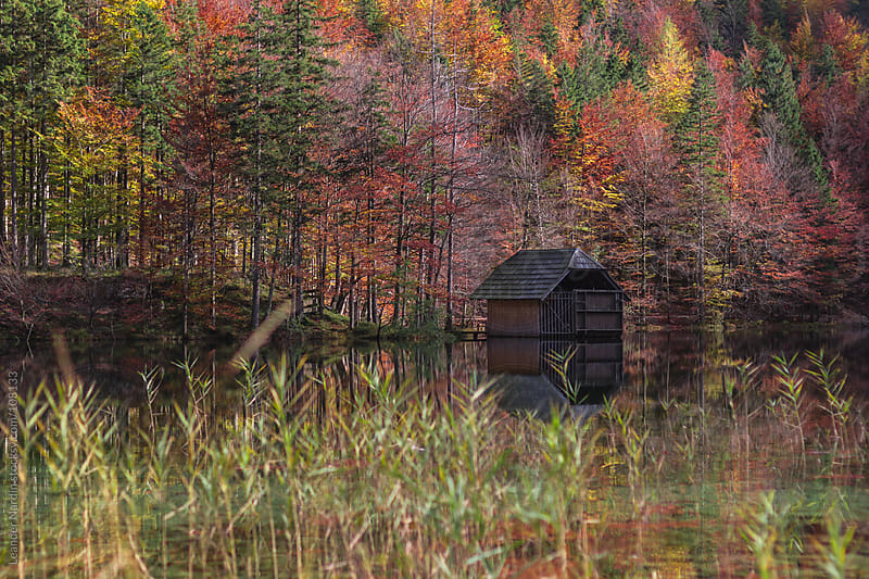 boathouse on a lake in an idyllic autumnal forest scenery by Leander Nardin for Stocksy United