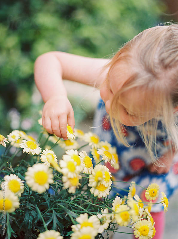 A Young Girl Playing with Flowers by Andrew Spencer for Stocksy United