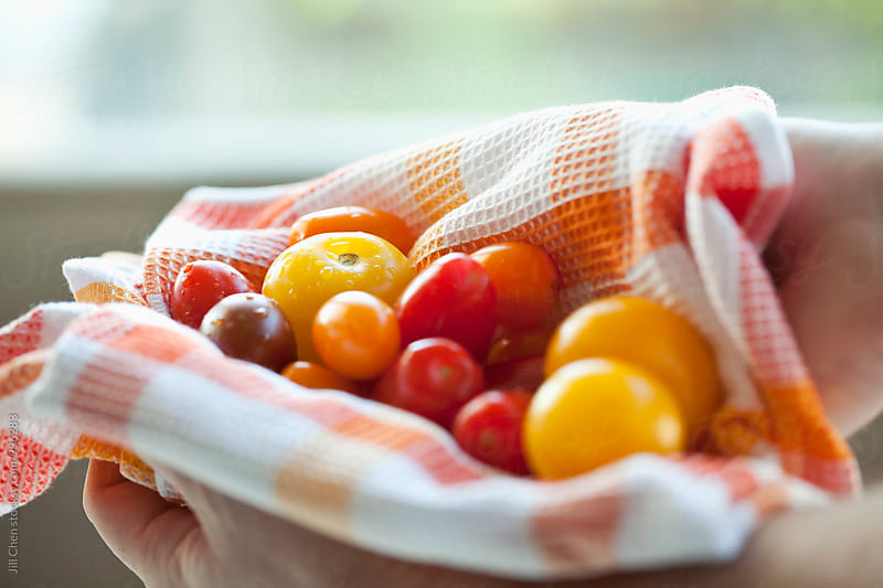 Red Orange Yellow Purple Heirloom Cherry Tomatoes by Jill Chen for Stocksy United