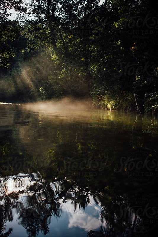 Fog over the forest river by Boris Jovanovic for Stocksy United