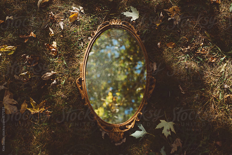Antique Mirror on Forest Floor by Kim Swain for Stocksy United