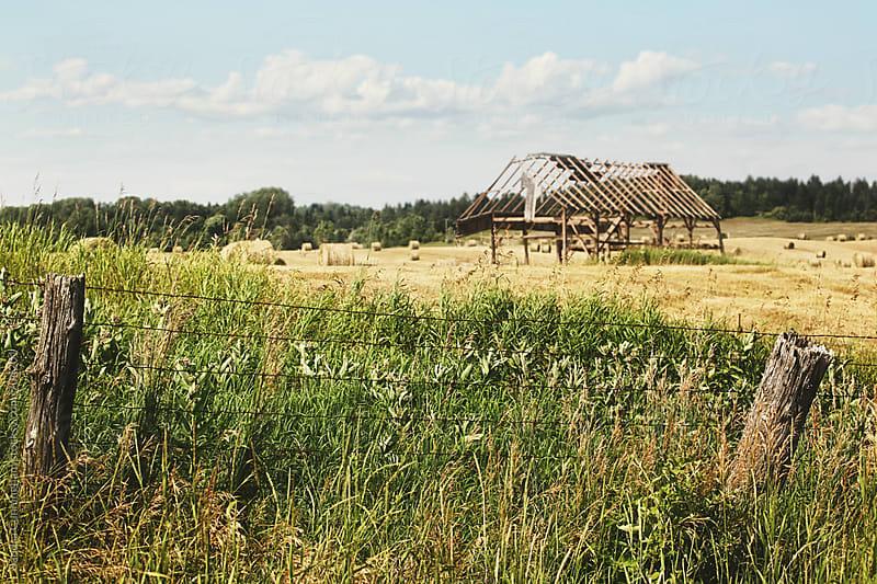 Deserted barn in field by Sandra Cunningham for Stocksy United