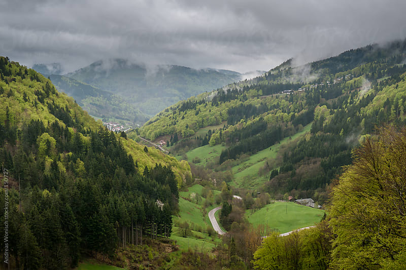 Black Forest Panorama during early Spring by Andreas Wonisch for Stocksy United