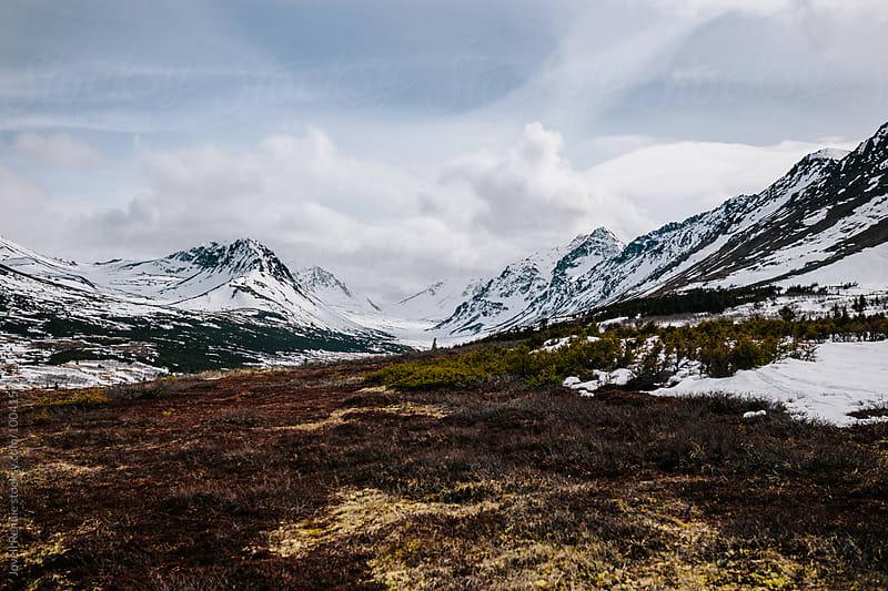 Alaskan Summer by Jovell Rennie for Stocksy United