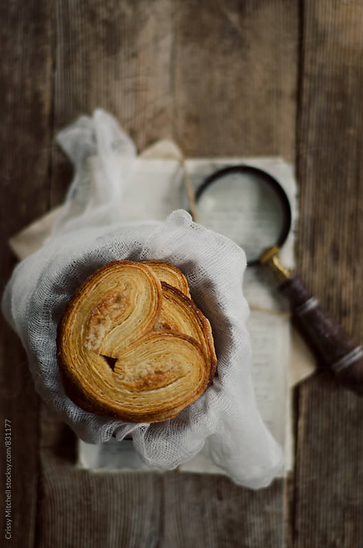 palmiers by Crissy Mitchell for Stocksy United