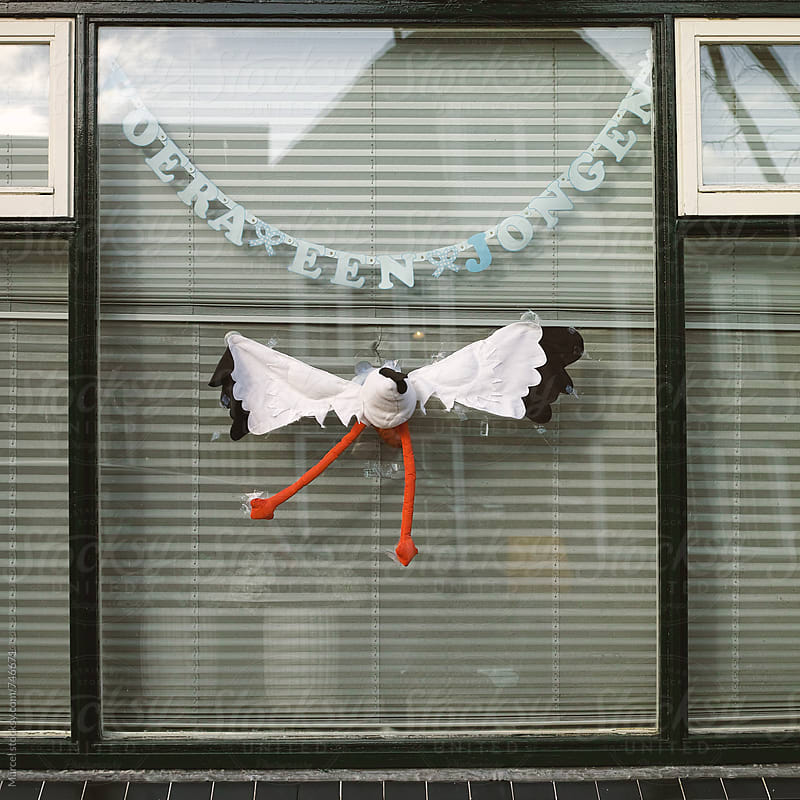 Funny toy stork against a window, celebrating the birth of a baby by Marcel for Stocksy United