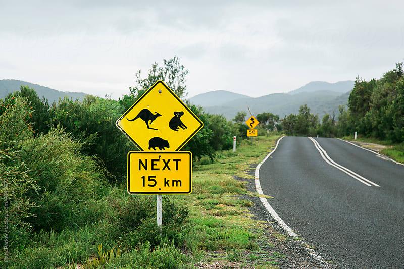 Australian wildlife sign by Gary Parker for Stocksy United