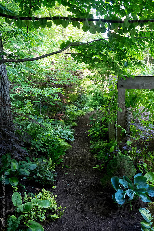 Garden Path by Jeff Wasserman for Stocksy United