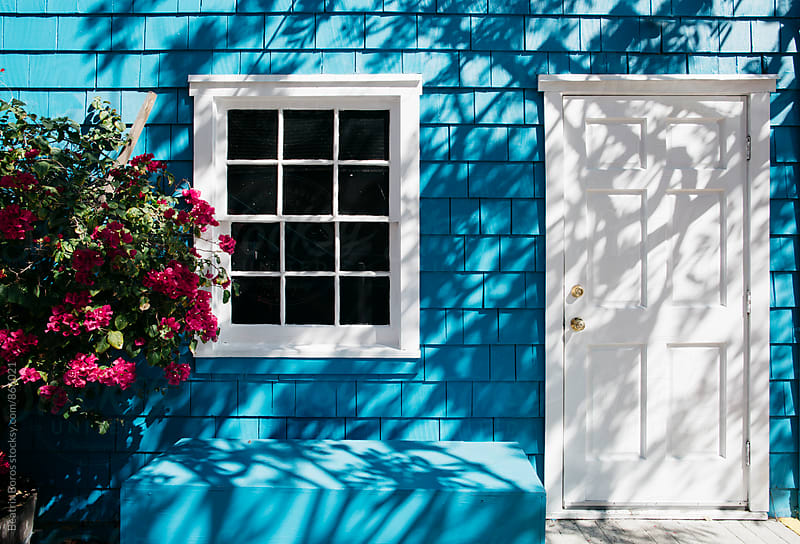 White window and door in a textured blue house with shadow of a tree by Beatrix Boros for Stocksy United