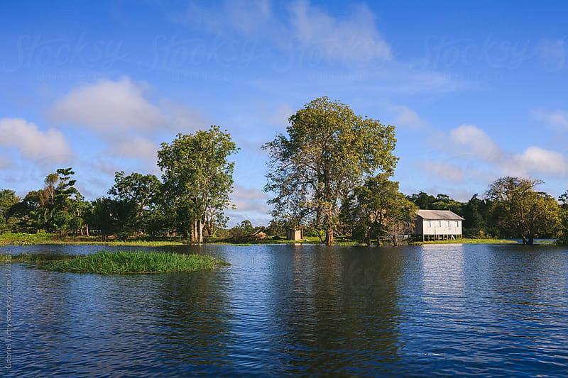 Rio Juma river in wet season by Gabriel Tichy for Stocksy United