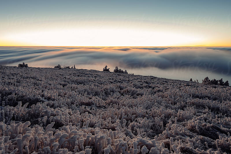 View from the mountain during winter by Tomas Mikula for Stocksy United
