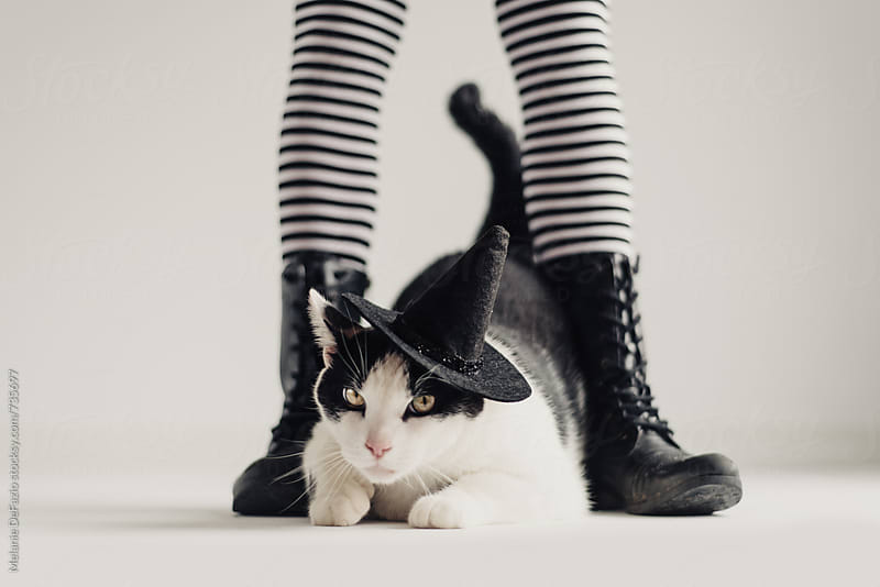 kitty witch by Melanie DeFazio for Stocksy United