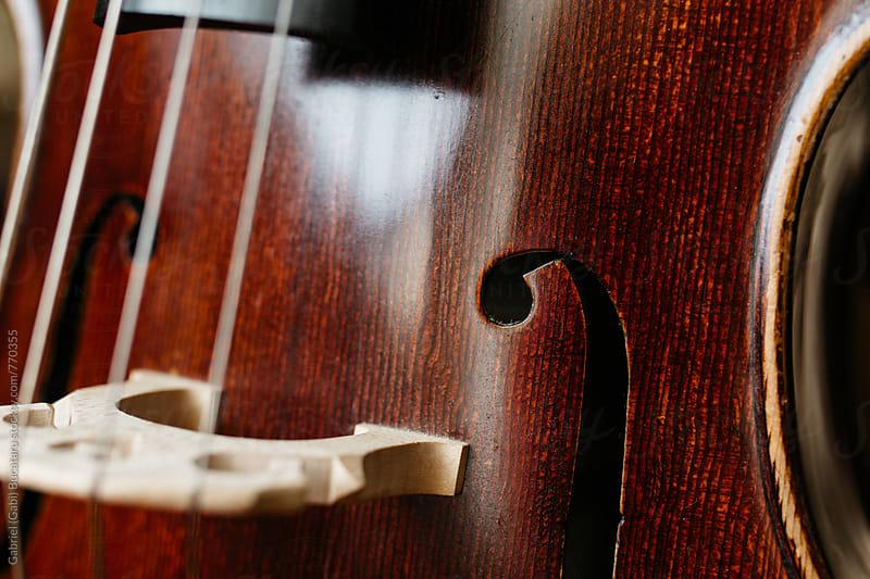 F-hole of a cello by Gabriel (Gabi) Bucataru for Stocksy United