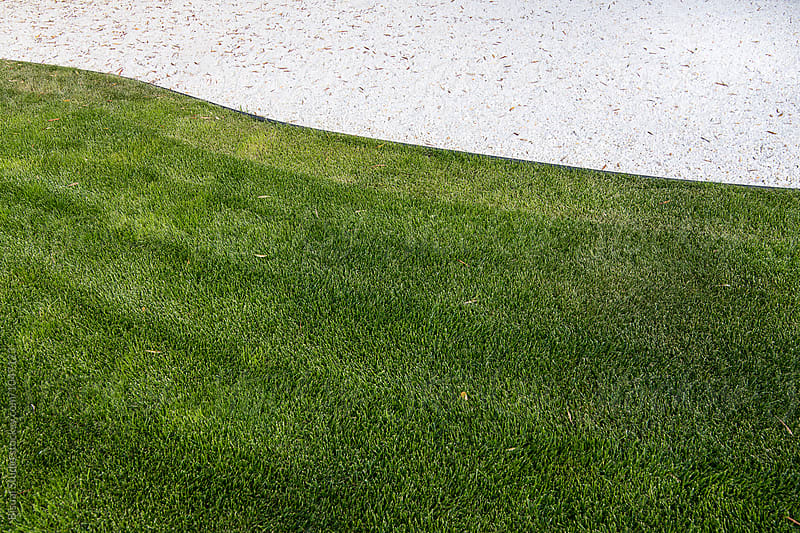 Grass and white surface on a zen garden by Bisual Studio for Stocksy United