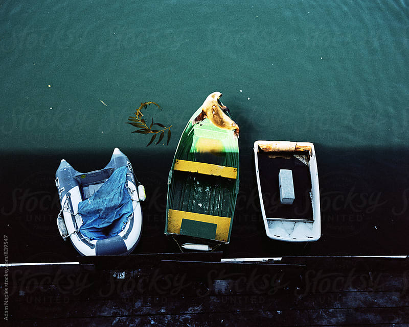 Monterey, California by Adam Naples for Stocksy United
