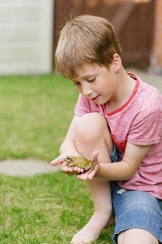 Boy holding frog in garden at home by Kirsty Begg for Stocksy United