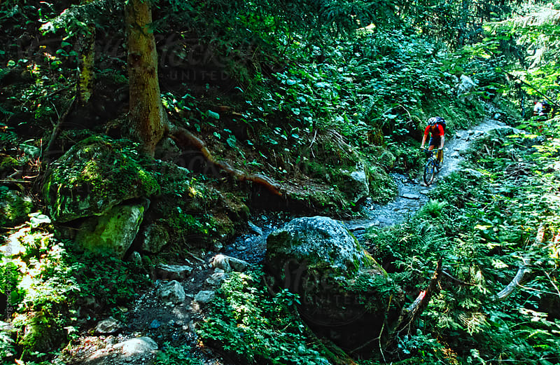 Mountain biker riding forest trail by Søren Egeberg Photography for Stocksy United