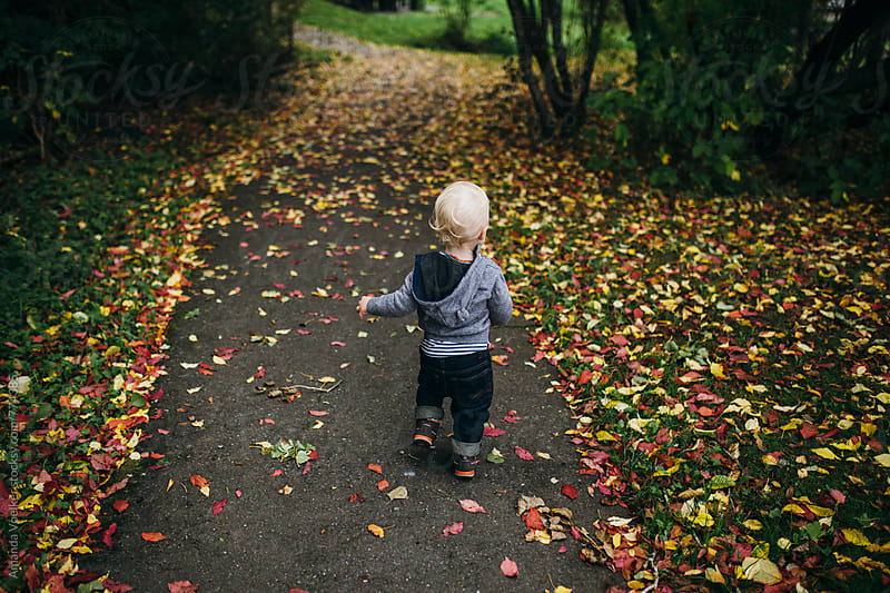 Back View of little Boy walking on Autumn Path of Fallen Leaves by Amanda Voelker for Stocksy United