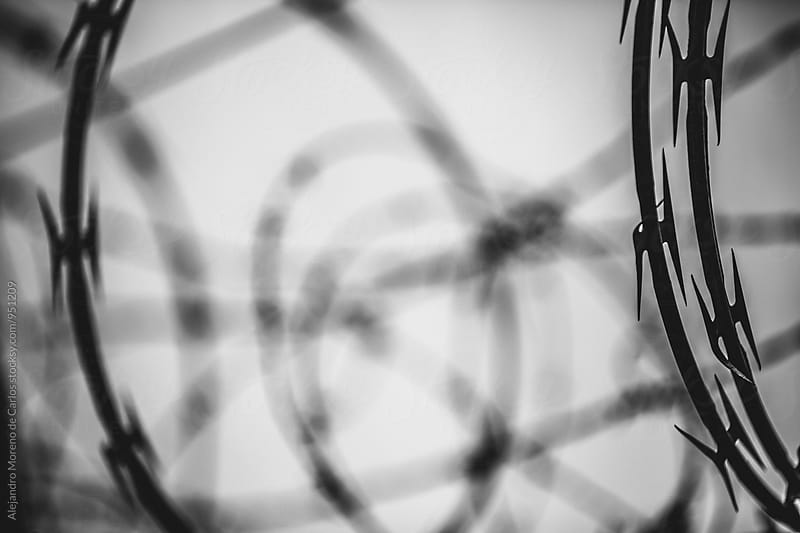 Barbed wire in close-up by Alejandro Moreno de Carlos for Stocksy United
