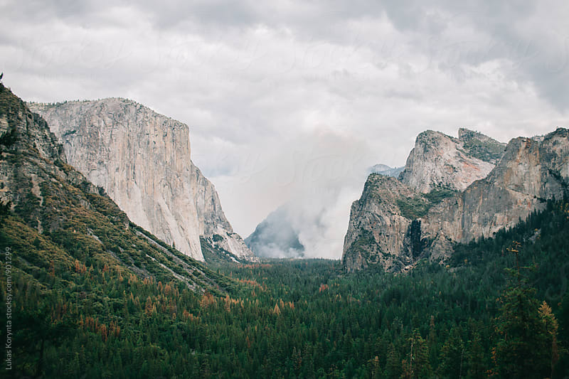 Fire in Yosemite by Lukas Korynta for Stocksy United